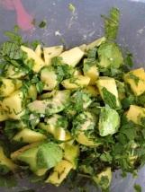 Mango, Avocado & Quinoa Salad